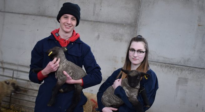 Animal Care students with lambs