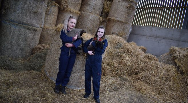 Female Animal Care students with new lambs