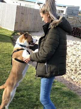 Female student holding dog