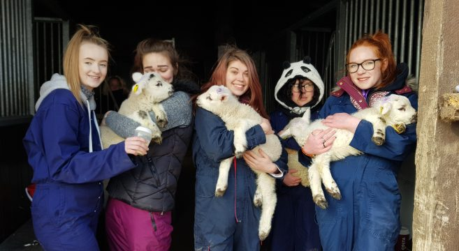 Animal Care students holding lambs